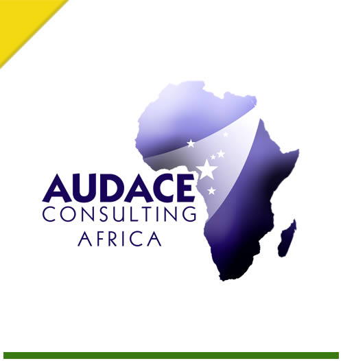 audace consulting africa sarl